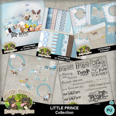 Littleprince11