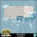 Littleprince08_small