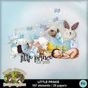 Littleprince01_small