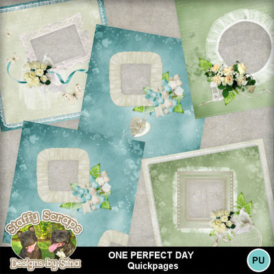 Oneperfectday08