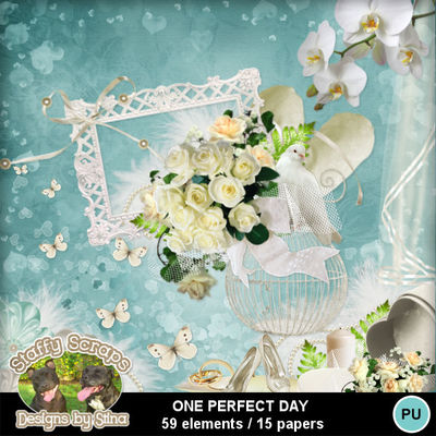 Oneperfectday01