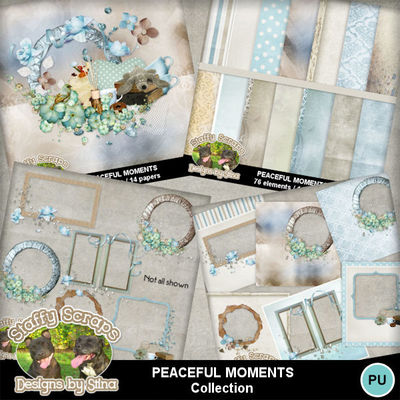 Peacefulmoments11