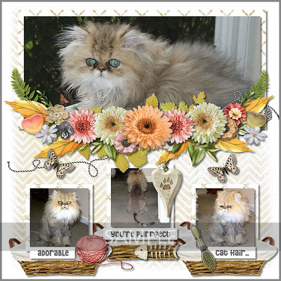 600-snickerdoodle-designs-love-my-cat-laureen-01
