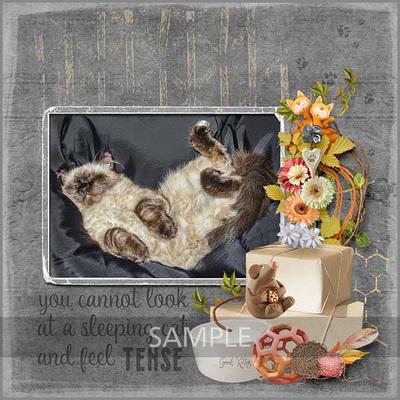 600-snickerdoodle-designs-love-my-cat-zanthia-01