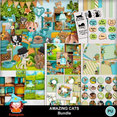 Kasta_amazingcats_bundle_pv
