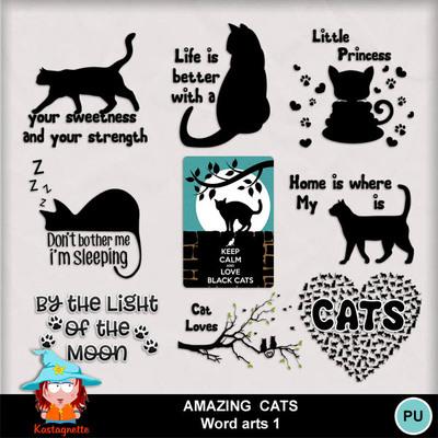 Kasta_amazingcats_wa1_pv