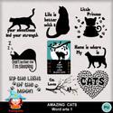 Kasta_amazingcats_wa1_pv_small