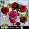 Cu_roses_small