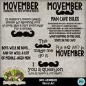 Movember13_small