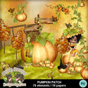 Pumpkinpatch1_small