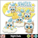 Night_owls_preview_small