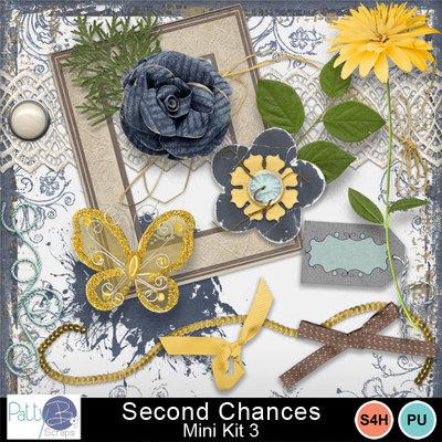 Pbs_second_chances_mk3ele