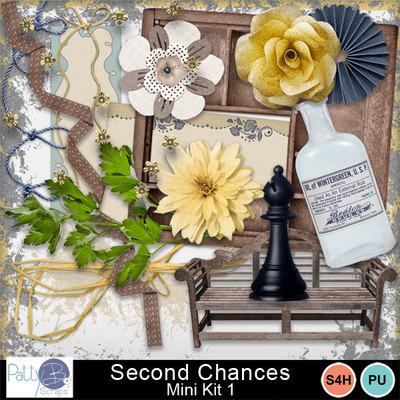Pbs_second_chances_mk1ele