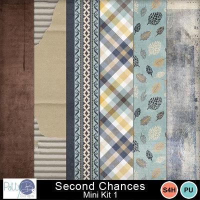 Pbs_second_chances_mk1ppr