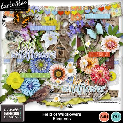 Aimeeh_fieldofwildflowers_ep