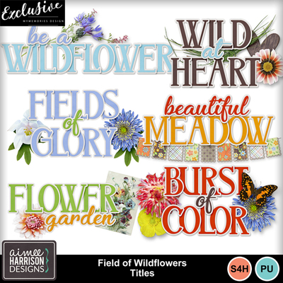 Aimeeh_fieldofwildflowers_titles