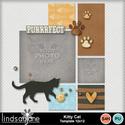 Kittycat_temp_001_small