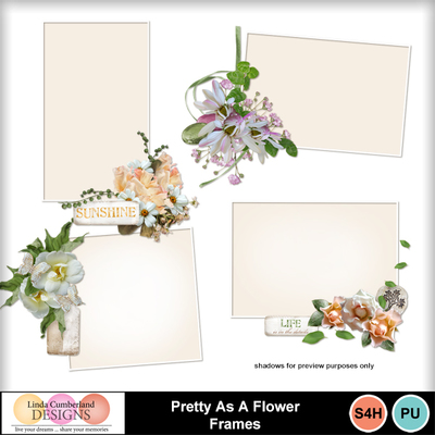 Pretty_as_a_flower_frames-1