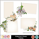 Pretty_as_a_flower_frames-1_small