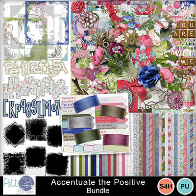 Pbs_accentuate_bundle