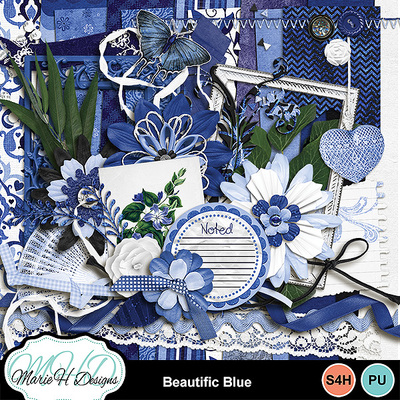 Beautific_blue_combo_01