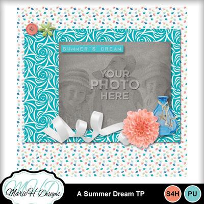 A_summer_dream_tp_02