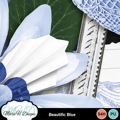 Beautific_blue_combo_06