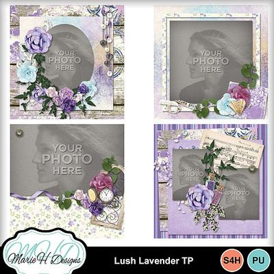 Lush_lavender_tp_01