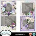 Lush_lavender_tp_01_small