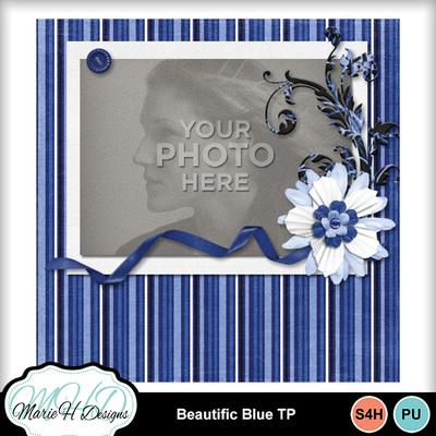 Beautific_blue_tp_02