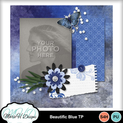 Beautific_blue_tp_03
