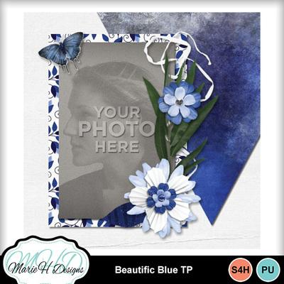 Beautific_blue_tp_05