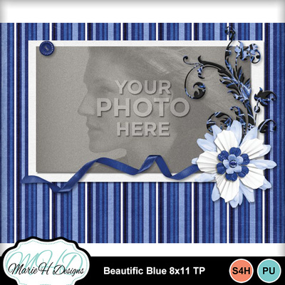 Beautific_blue_8x11_tp_02