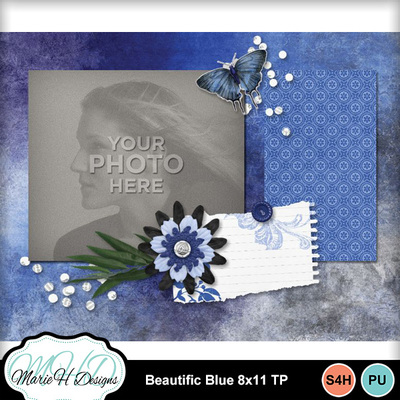Beautific_blue_8x11_tp_03