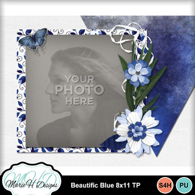 Beautific_blue_8x11_tp_05