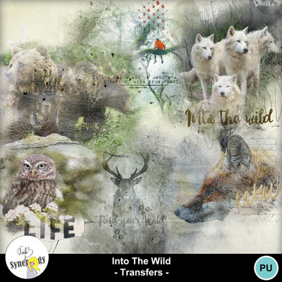 Si-intothewildtransfers-pvmm-web