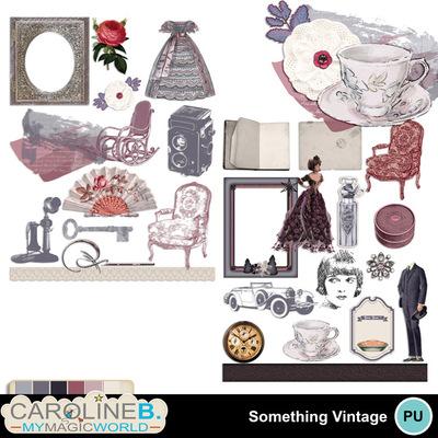 Something-vintage-el1
