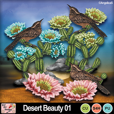 Desert_beauty_01_preview