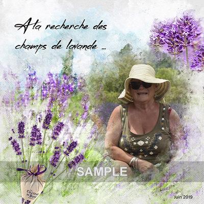 Mm-lavenderland-page__9_