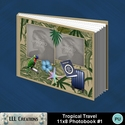 Tropical_travel_11x8_book_1-001a_small