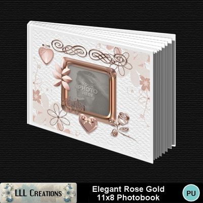 Elegant_rose_gold_11x8_book-00a