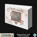 Elegant_rose_gold_11x8_book-00a_small