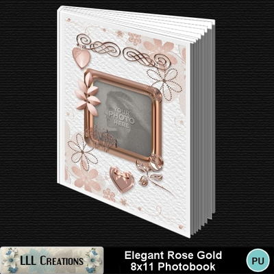 Elegant_rose_gold_8x11_book-00a