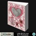 Little_bit_of_love_8x11_photobook-00a_small