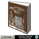Country_christmas_8x11_book-001a_small