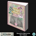 Beautiful_memories_8x11_book-001a_small