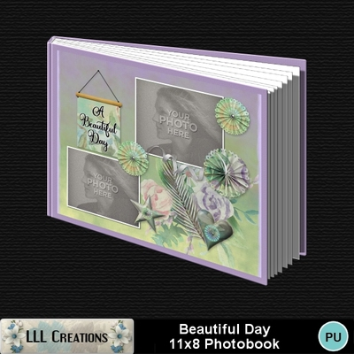 Beautiful_day_11x8_photobook-001a