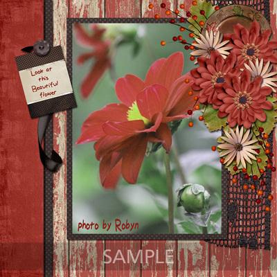 Scrapbookcrazy-creations-autumn-splendor-robyn-0400s
