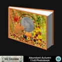 Abundant_autumn_11x8_photobook-001a_small