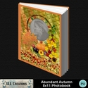 Abundant_autumn_8x11_photobook-001a_small